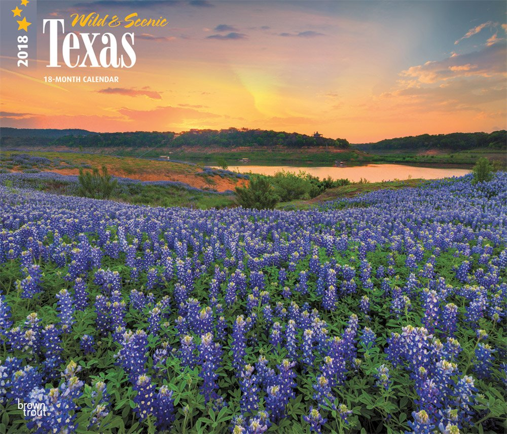 Texas, Wild & Scenic 2018 14 x 12 Inch Monthly Deluxe Wall Calendar, USA United States of America Southwest State Nature pdf epub
