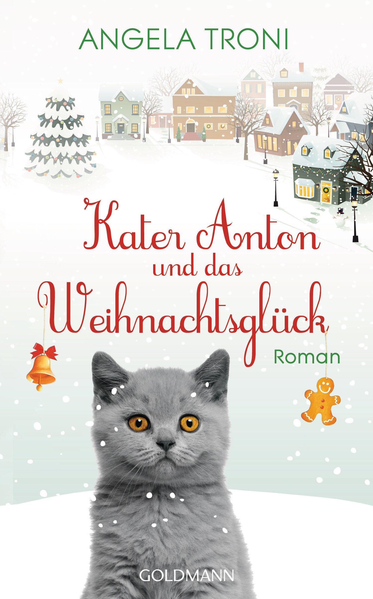 Kater Anton und das Weihnachtsglück: Kater Anton Band 1 - Roman