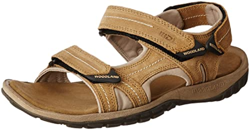 2ef407f9487 Woodland Men s Sandals  Buy Online at Low Prices in India - Amazon.in