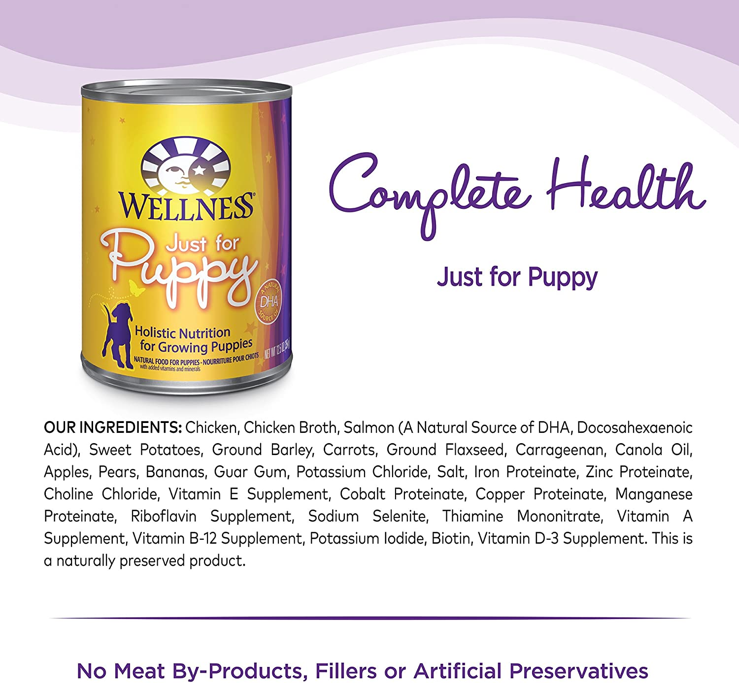 Wellness Complete Health Natural Wet Canned Dog Food Puppy Chicken Salmon