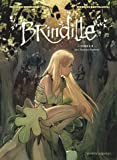 Brindille, Tome 1 : Les Chasseurs d'ombres