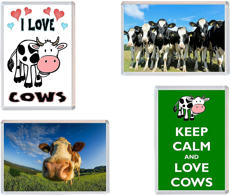 Lote de 4 imanes para nevera, diseño de vaca: Amazon.es: Oficina y ...