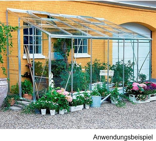 Royal invernadero de pared de cristal con base-naves: Amazon.es: Jardín