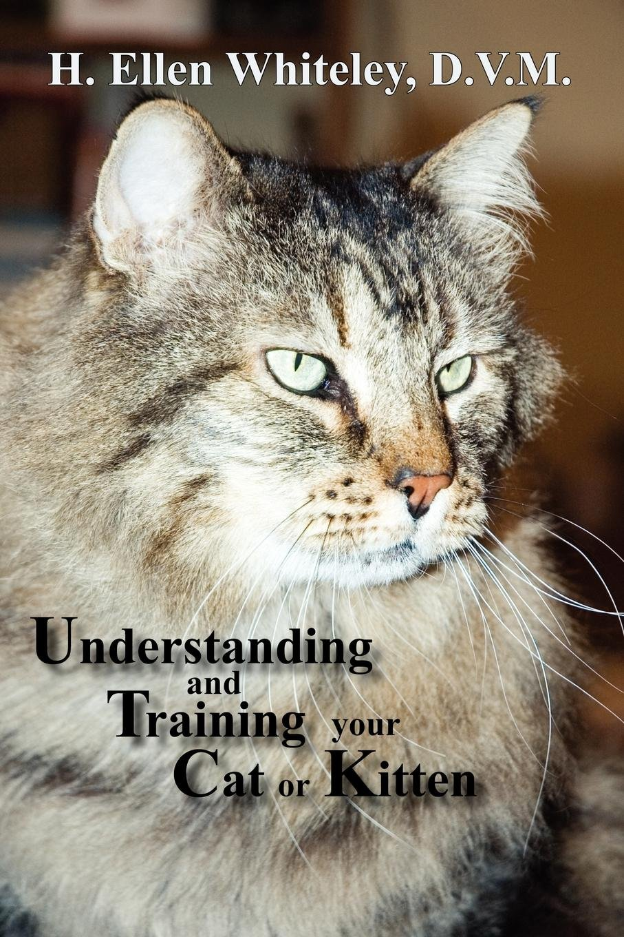 Understanding and Training Your Cat or Kitten
