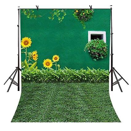 amazon com 5x7ft sunflower backdrop green wall photography