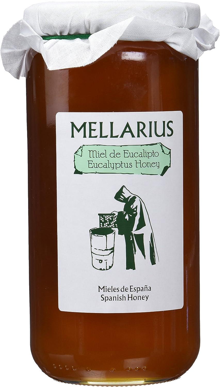 Miel de Eucalipto Mellarius 970 g: Amazon.es: Alimentación y bebidas