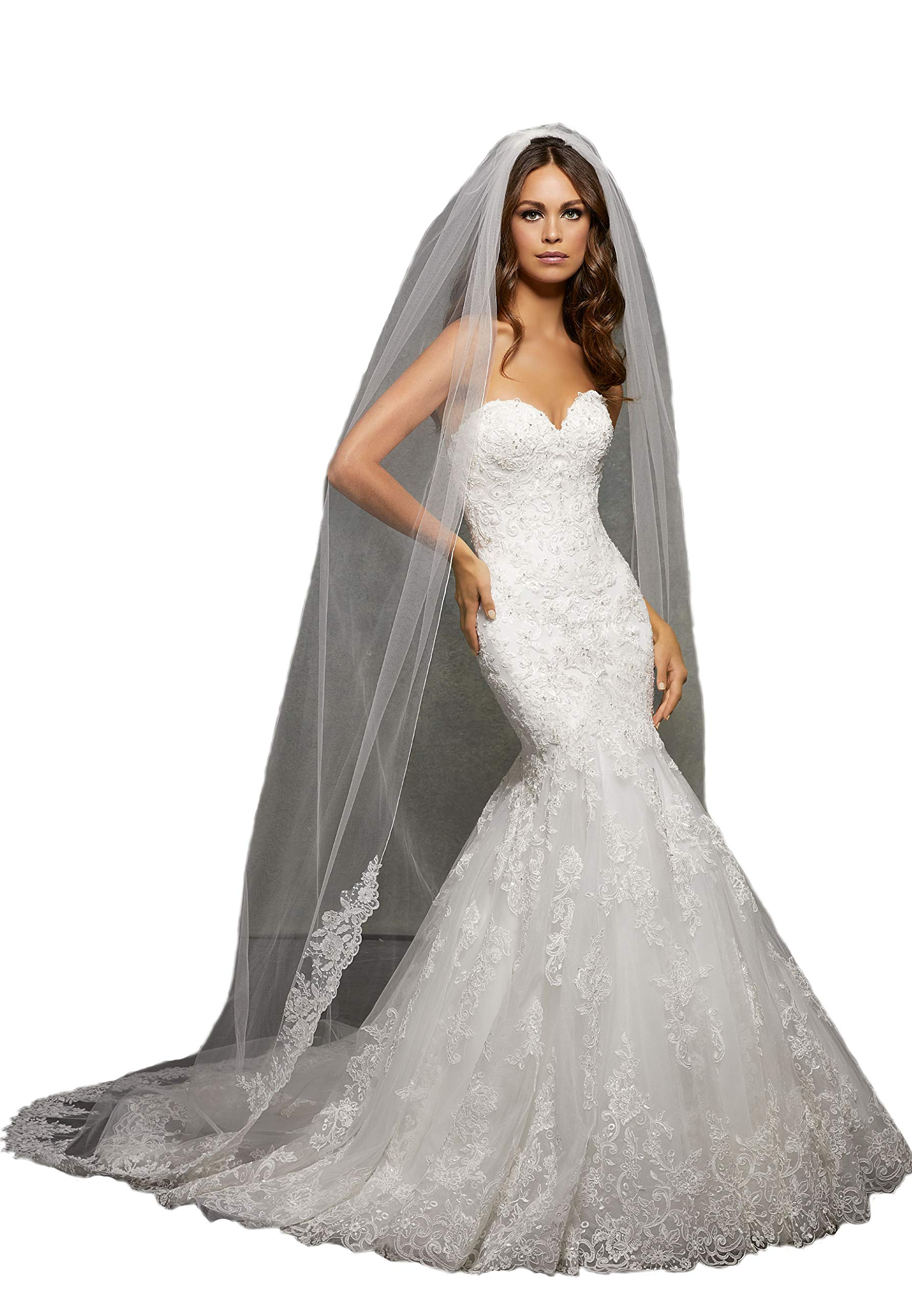 Passat Pale Ivory Single-Tier 3M Cathedral Wedding Bridal Veil Edged with Lace, Beaded with Sequins and Rhinestones VL1057 by Passat