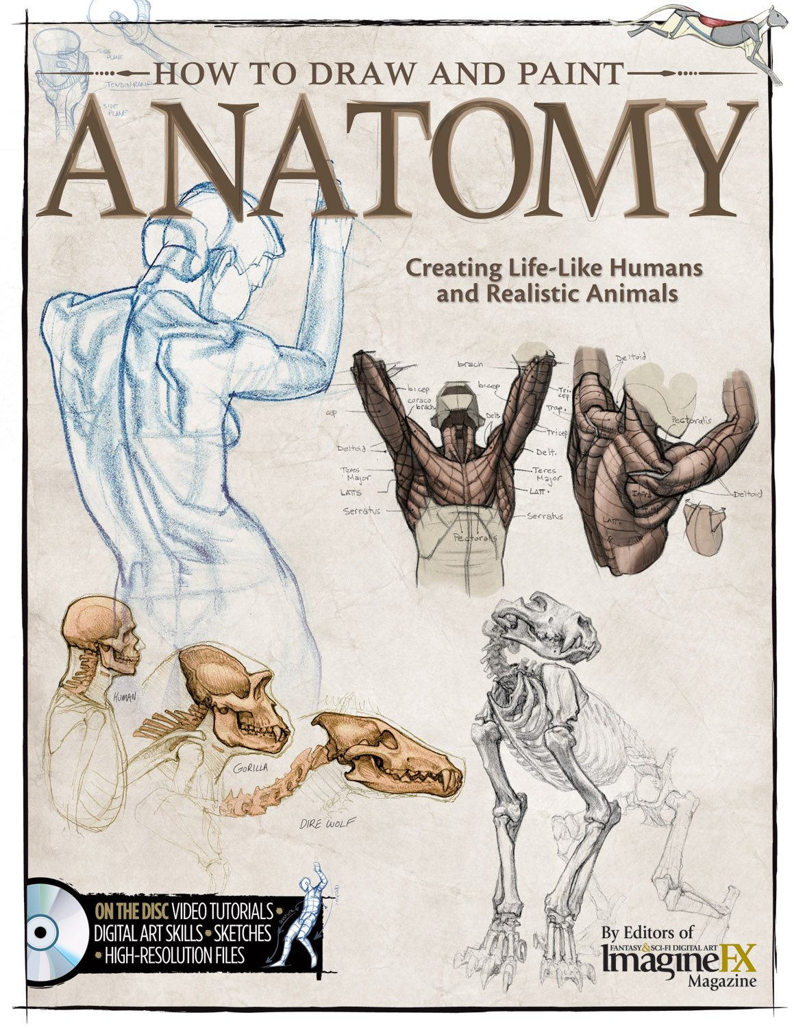 How to Draw and Paint Anatomy: Creating Life-Like Humans and Realistic Animals pdf