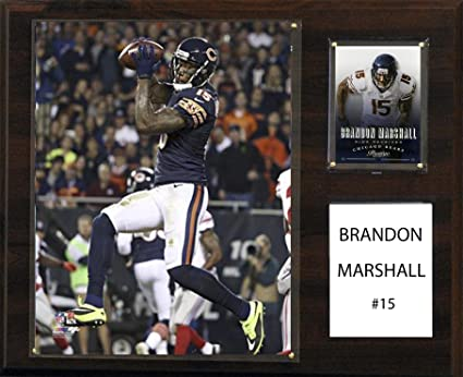 competitive price ba01d e78f7 Amazon.com : C&I Collectables NFL Chicago Bears Brandon ...