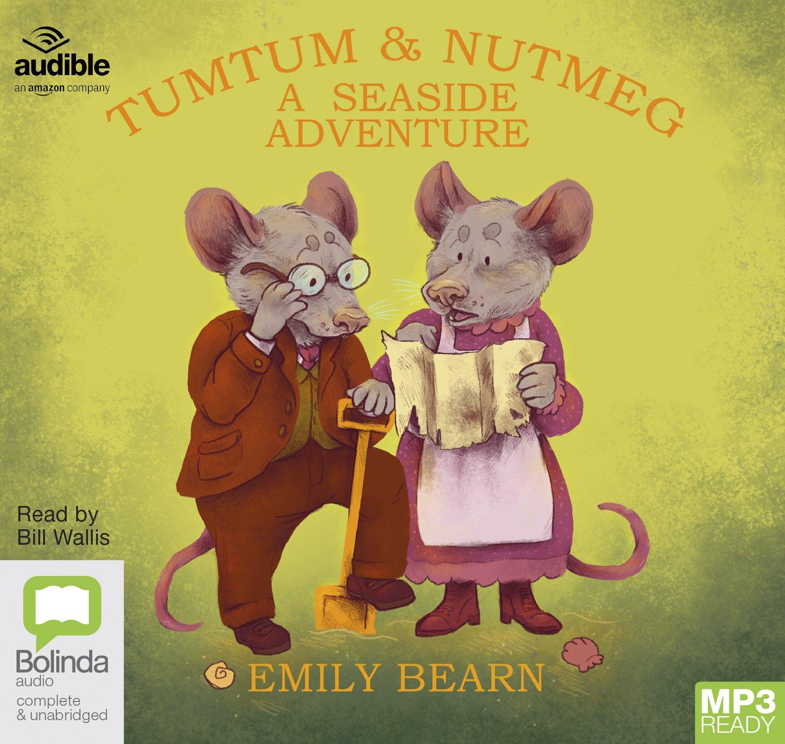 A Seaside Adventure: 5 (Tumtum and Nutmeg): Emily Bearn: 9781489408112:  Amazon.com: Books