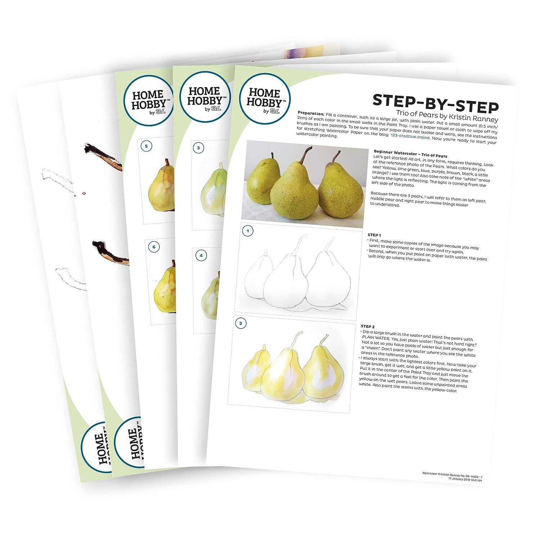 Amazon.com: HomeHobby - Kit de estudio de acuarela de 3 ...