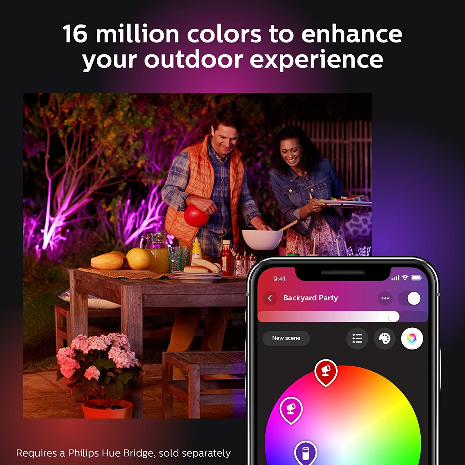 Philips Hue 802074 Lily Outdoor Light Bulb Black