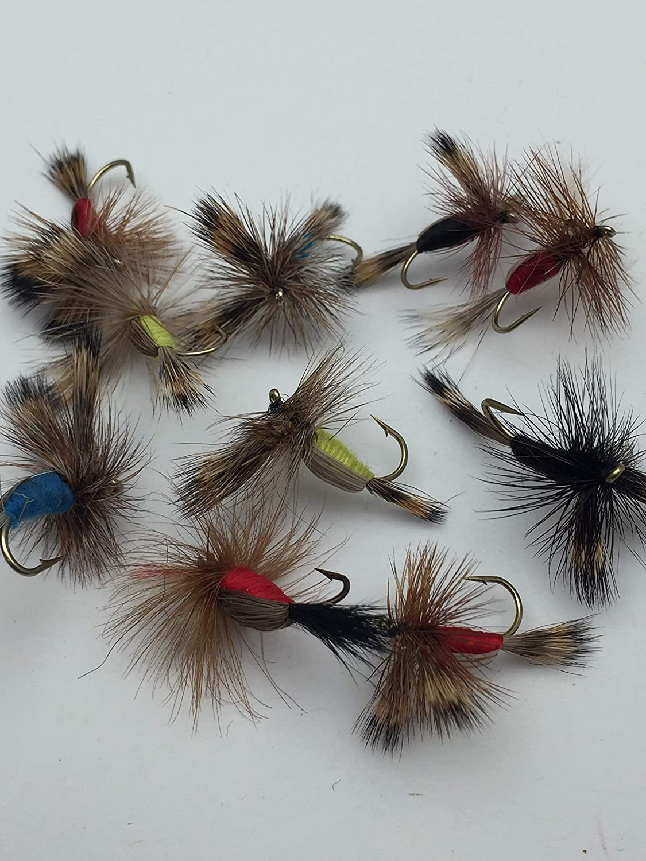 10 Fliegen BestCity Fliegenfischen Humy Trockenfliegen 12 Gr/ö/ßen 10