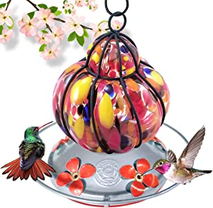 Grateful Gnome - Hummingbird Feeder - Hand Blown Glass - Caged Flower - 16 Fluid Ounces Additional Accessories Include S-Hook, Ant Moat, Brush and Hemp Rope Included