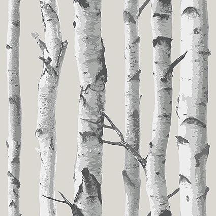 Popular Birch Tree Peel And Stick Wallpaper - - Amazon.com IT87