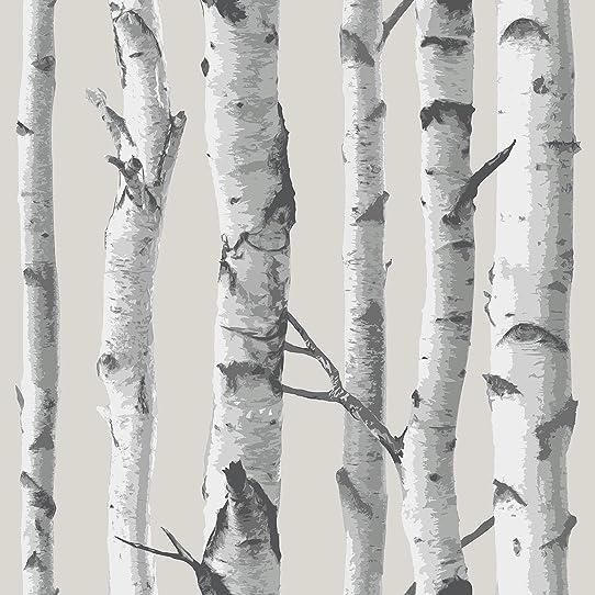 WallPops NU1650 Birch Tree Peel and Stick Wallpaper, Multi-Color ...