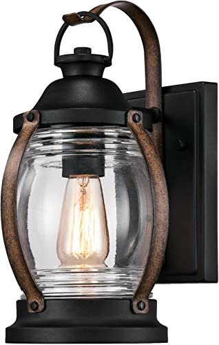 Westinghouse Lighting 6335100 Canyon One-Light Outdoor Wall Fixture