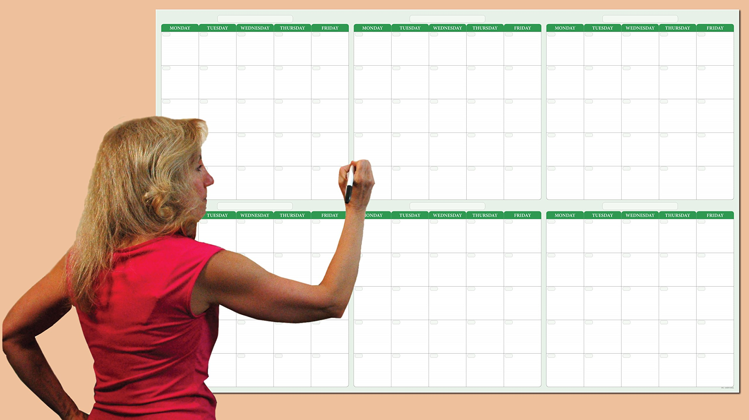 180-Day / 6-Month Dry-erase Horizontal Earth Green Wall Calendar 38 in. X 58 in. - No Weekends by PlanetSafe Planners & Calendars