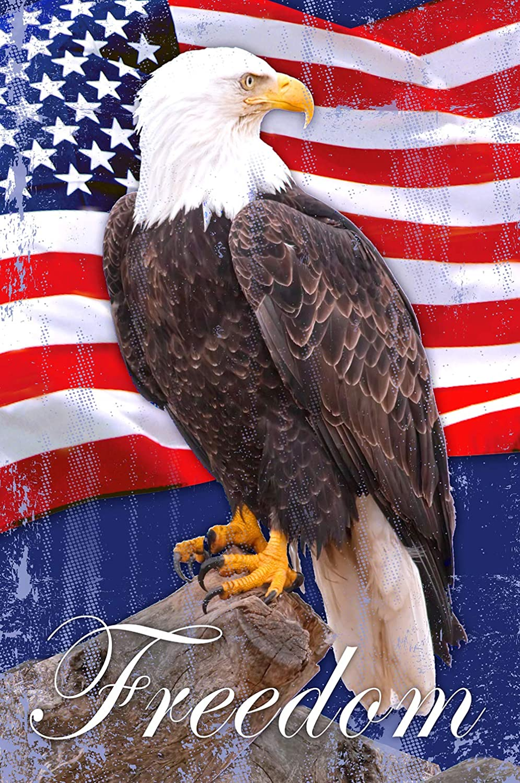 Texupday Patriotic Freedom USA Eagle Garden Flag Outdoor Yard Flag 12