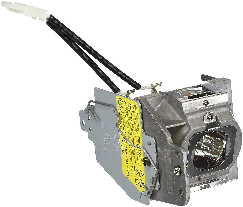Acer MC.JFZ11.001 - Lámpara para proyector H6510BD, P1500 (210 W ...