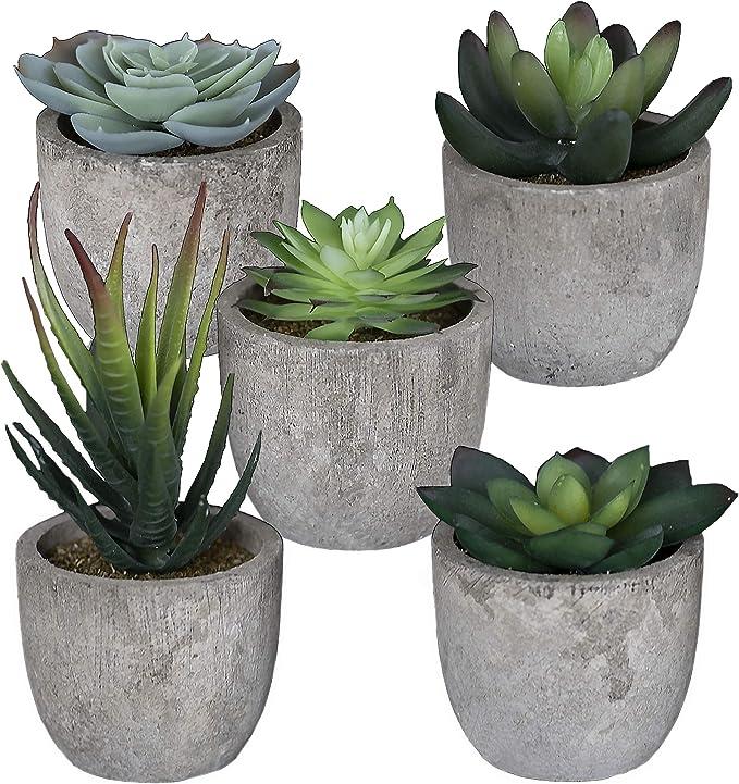 Set of 5 Artificial Succulent Plants with Pots