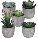 5 Artificial Succulent Plants with Pots with Rustic Planter Box – Home Sweet Home & Live Laugh Love | Realistic Greenery…