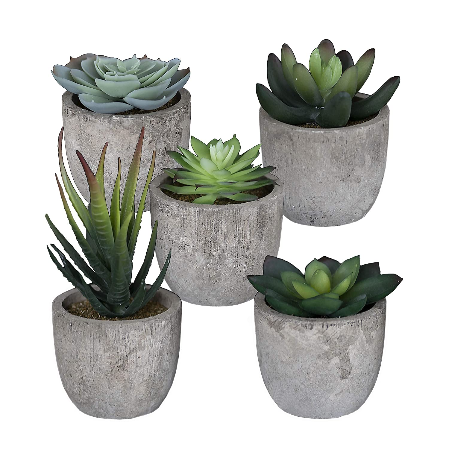 Sophia's Garden Set of 5 Artificial Succulent Plants with Pots – Realistic Greenery Mini Potted Faux Plant Arrangements | for Home Office Decor, Dorm Room, Bathroom, Kitchen Table Centerpieces