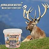 Himalayan Nature Deer Mineral Rock Salt Chunks