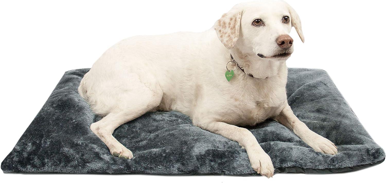 ZOLLNER Colchón de Viaje para Perros, Impermeable y Plegable, 60x90 cm