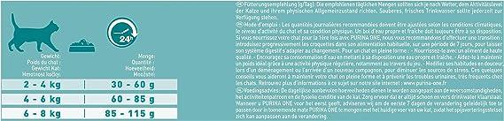 Purina ONE - Bifensis esterilizados, con Pollo y Trigo 6 Kg: Amazon.es: Productos para mascotas