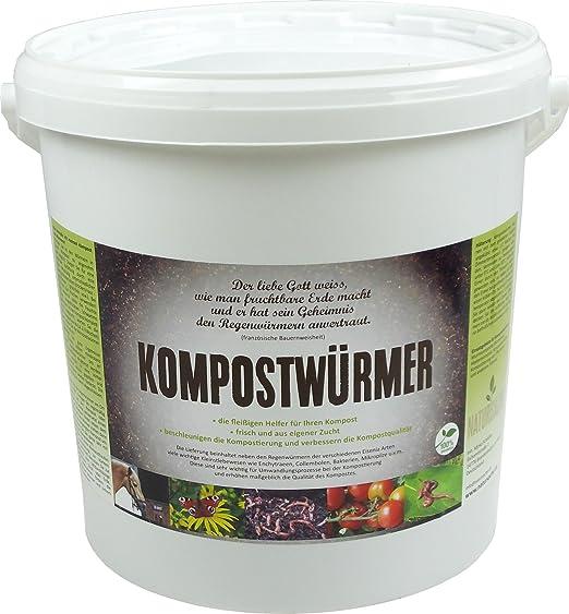Compost gusanos – 1000 unidades/Cubo de compostaje Starter ...