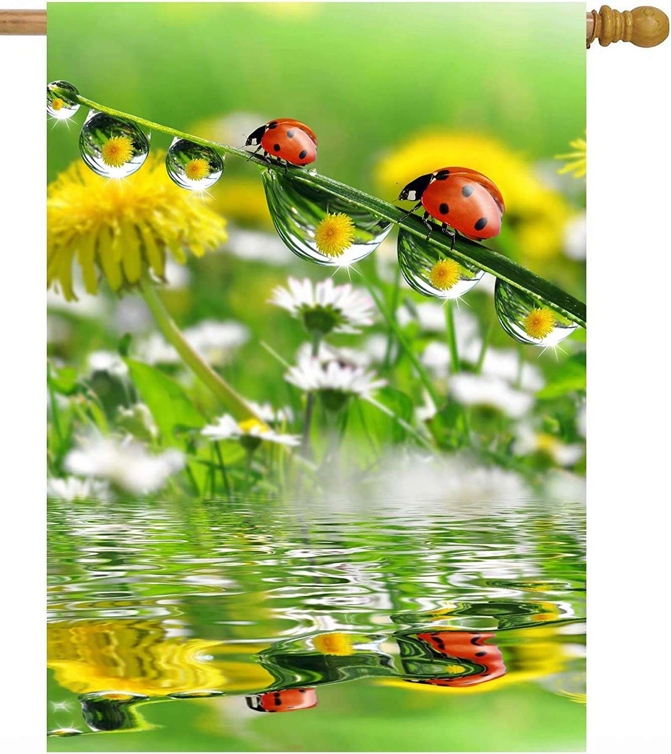 Pickako Ladybugs Insects Dew Drops in Dandelion Flowers Lake Spring Summer Seasonal House Flag 28 x 40 Inch, Double Sided Large Garden Yard Welcome Flags Banners for Home Lawn Patio Outdoor Decor