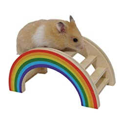 Rainbow Play Bridge Toy For Hamster