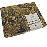 Magic Garden Seeds Kit de graines: 'Herbes-aux-Chat', semences pour 3 variétés de Plantes adorées par Les Chats dans Un Beau Cadeau Emballage
