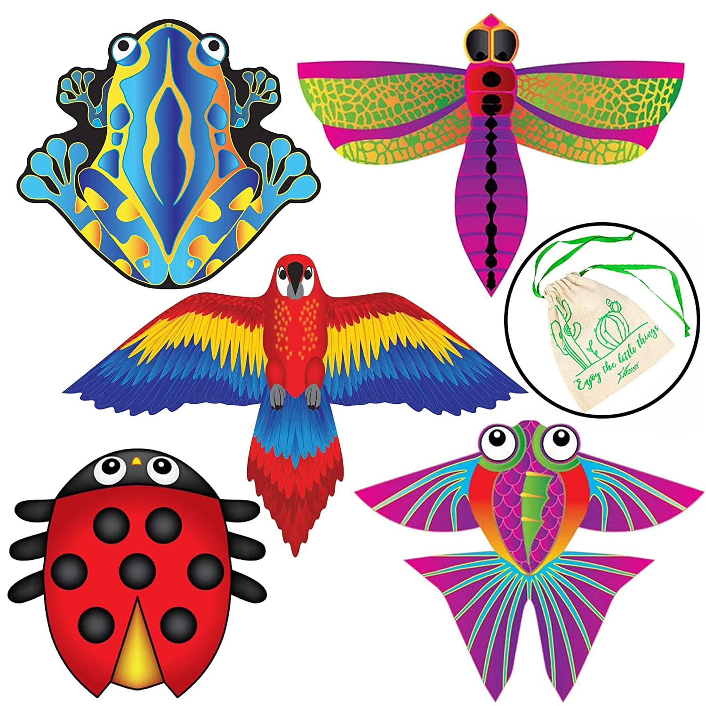 Brainstorm 自然のマイクロカイト 5個セット B07QHF12B4 B07QHF12B4, アムールパジャマ公式オンライン:d46976c9 --- ferraridentalclinic.com.lb