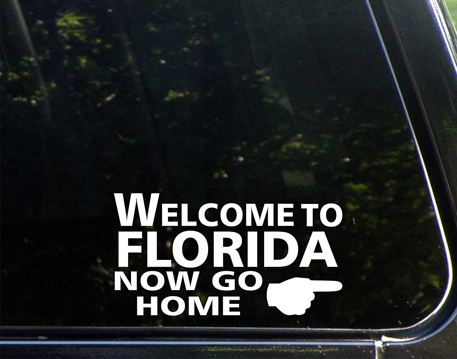 Amazoncom Welcome To Florida Now Go Home X Vinyl Die - How to make car decals at home