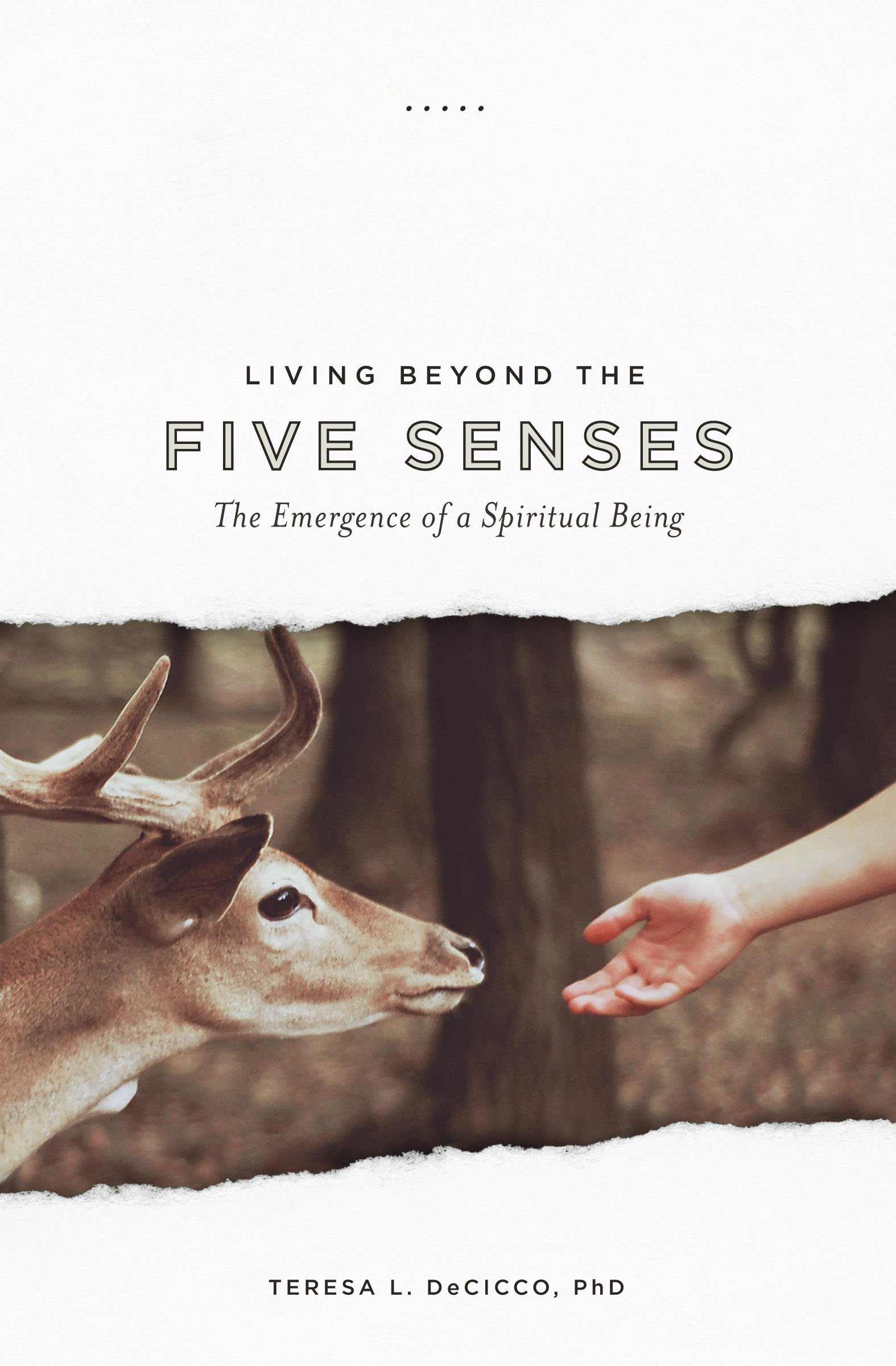 Living Beyond the Five Senses: The Emergence of a Spiritual Being pdf