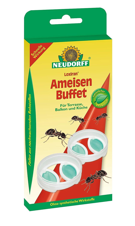Neudorf Ameisen-Buffet 2Er: Amazon.de: Garten
