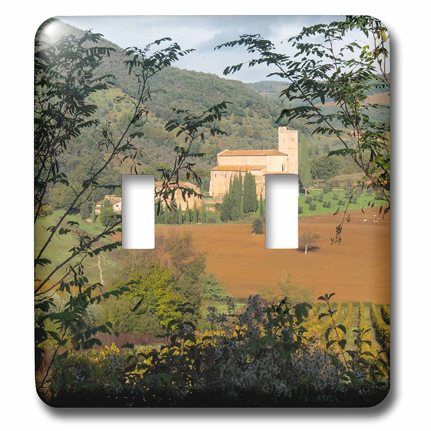 3D Rose LSP/_227565/_2 Italy Tuscany Vineyard and Olive Trees Double Toggle Switch