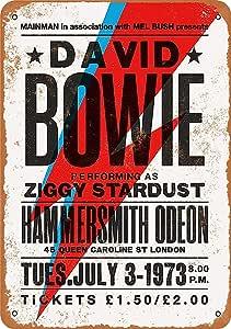 David Bowie in London Cartel de chapa metálica Cartel de arte pintado de metal retro Decoración Placa Placa de advertencia Bar Café fiesta de garaje Sala de juegos Decoración del hogar