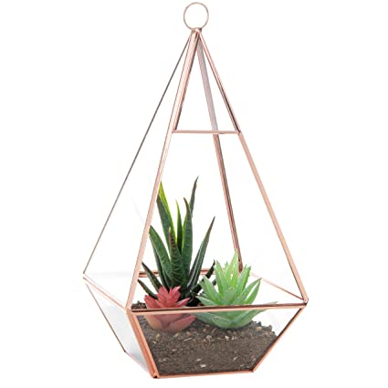 Amazon Com 9 Inch Rose Gold Tone Metal Glass Pyramid Air Plant