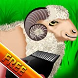 Wooly Sheep Shave : The Shepherd Shaving Lamb Day for Wool...