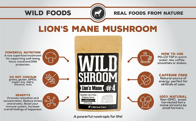 Amazon.com: Lion\'s Mane Mushroom Extract 10:1 Superfood Powder by ...