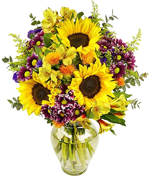 Amazon.com : Benchmark Bouquets Flowering Fields, With Vase ...