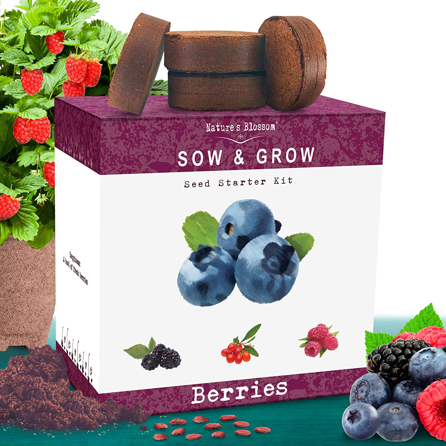 Amazon Com Nature S Blossom Fruit Growing Kit Grow 4 Types Of