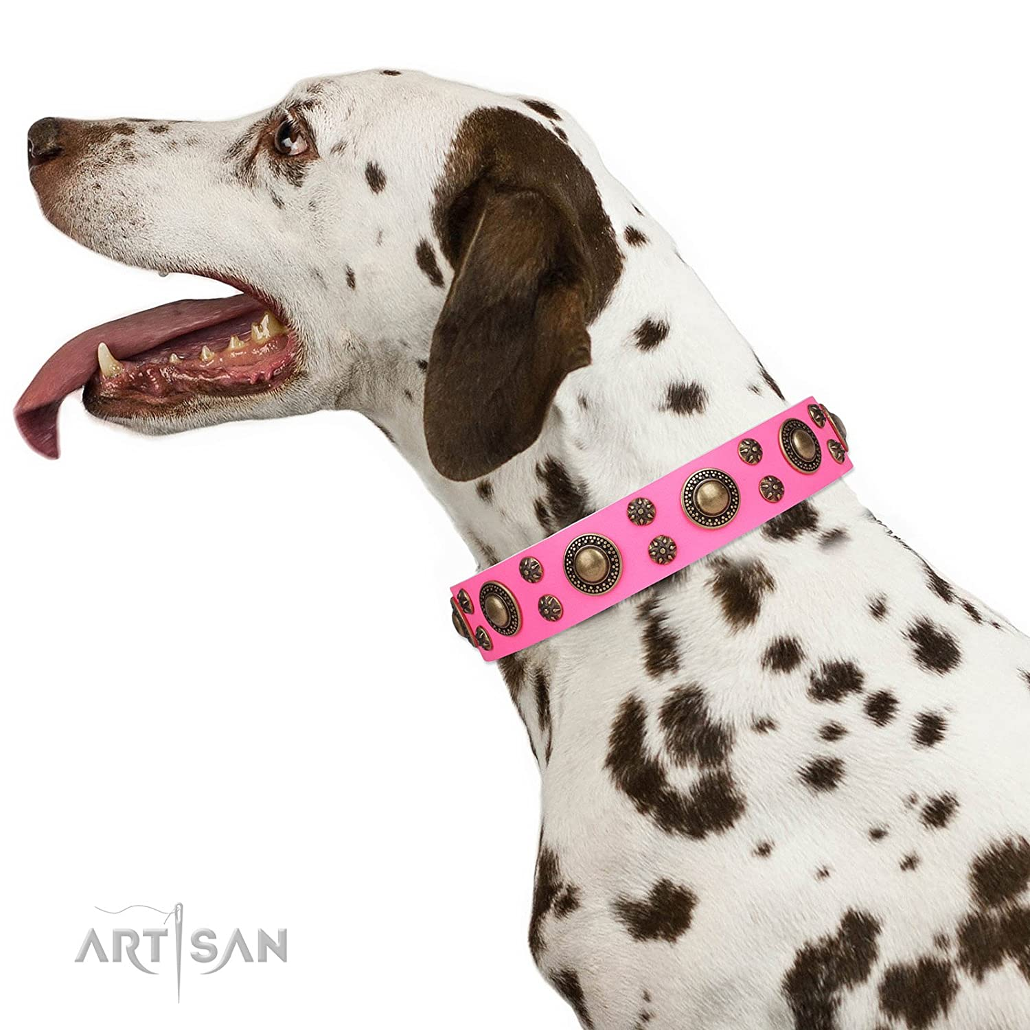 Fits for 28 inch (70cm) dog's neck size FDT Artisan 28 inch Pink Leather Dog Collar with Brass Plated Decor  Pink of Perfection  Gift Box Included