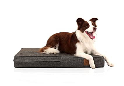 Laifug Orthopedic Memory Foam Pet/Dog Bed with Durable Water Proof Liner and Removable Designer