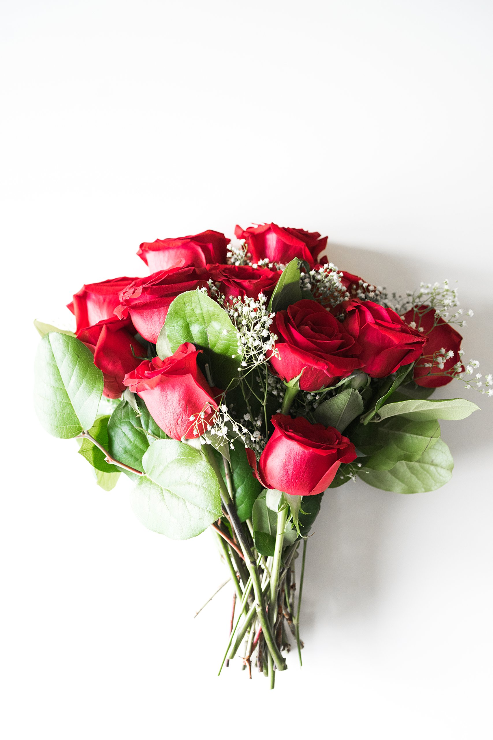 Flowers - One Dozen Long Stemmed Red Roses (Free Vase Included) by From You Flowers (Image #6)