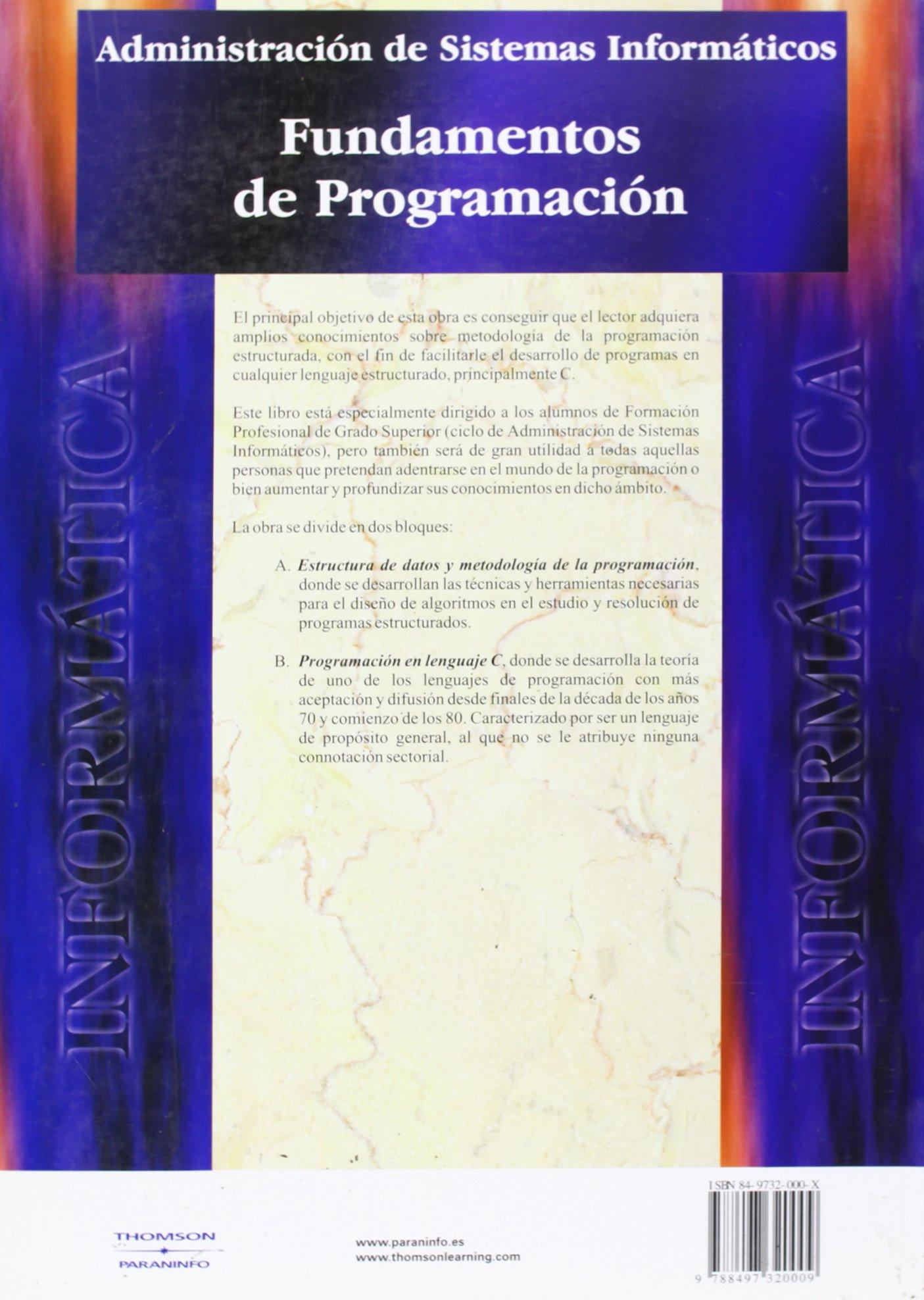 Fundamentos De Programacion Spanish Edition Enrique Quero