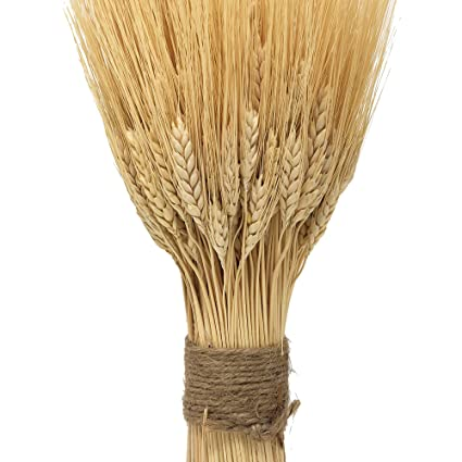 amazon com nettleton hollow golden dried wheat sheaves home kitchen